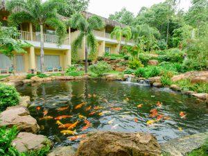 combo-du-lich-phu-quoc-3-ngay-2-dem-tai-Lahana-Resort-phu-quoc5